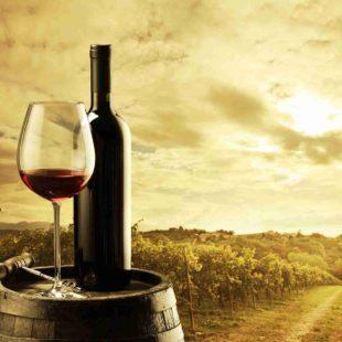 Alternative Wine Closure